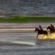 galop cheval sur la plage