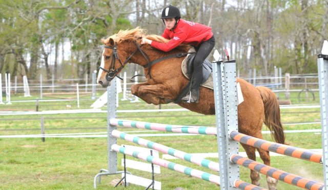 saut d'obstacle à cheval