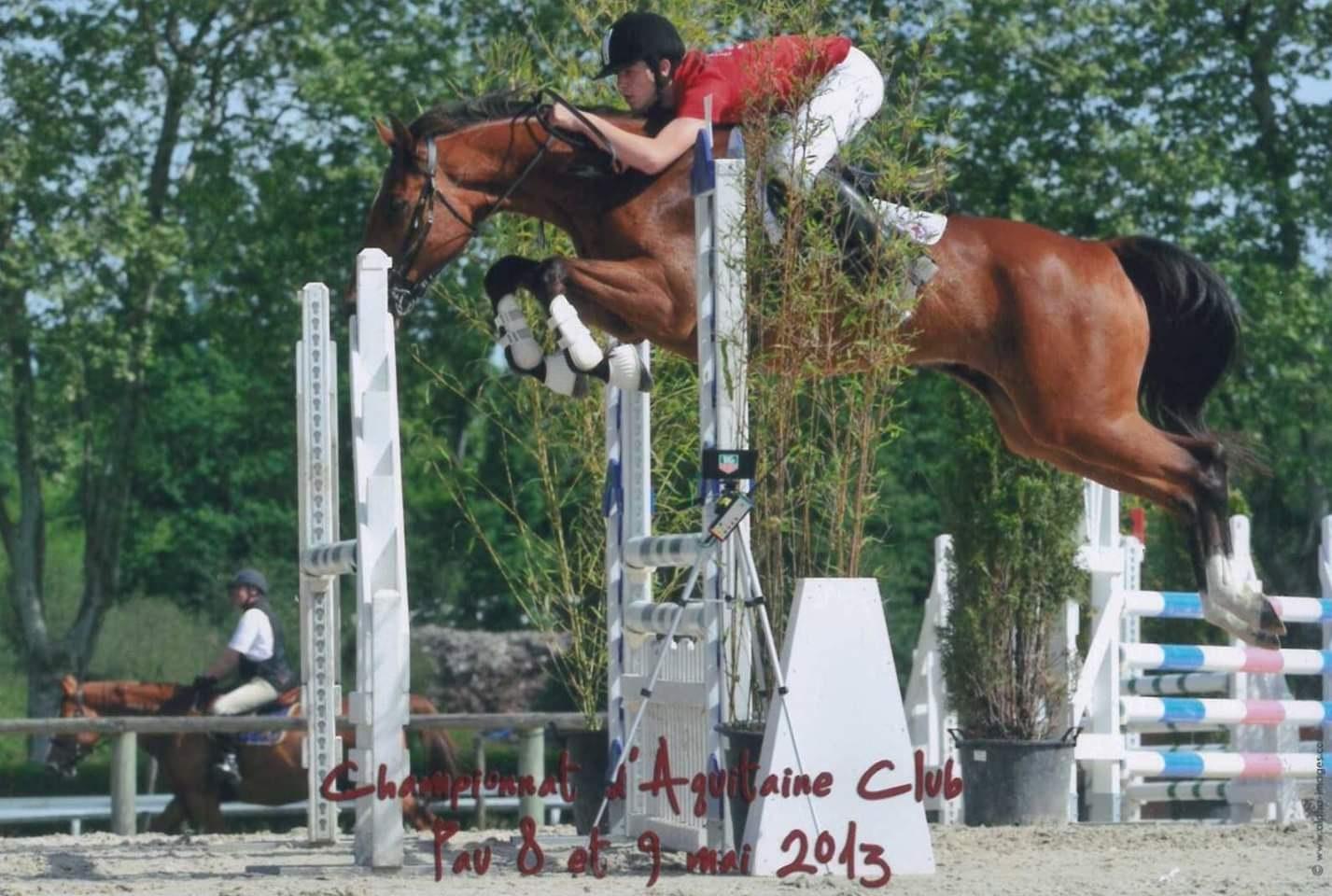 Training Program And Jumping In France Riding Instruction Harmony Horse Rider 2020 Equestrian Center Marina