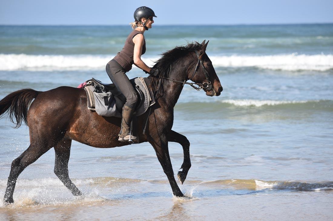 Jours L'équitation Stage Découverte De 6 O8mnyN0vwP