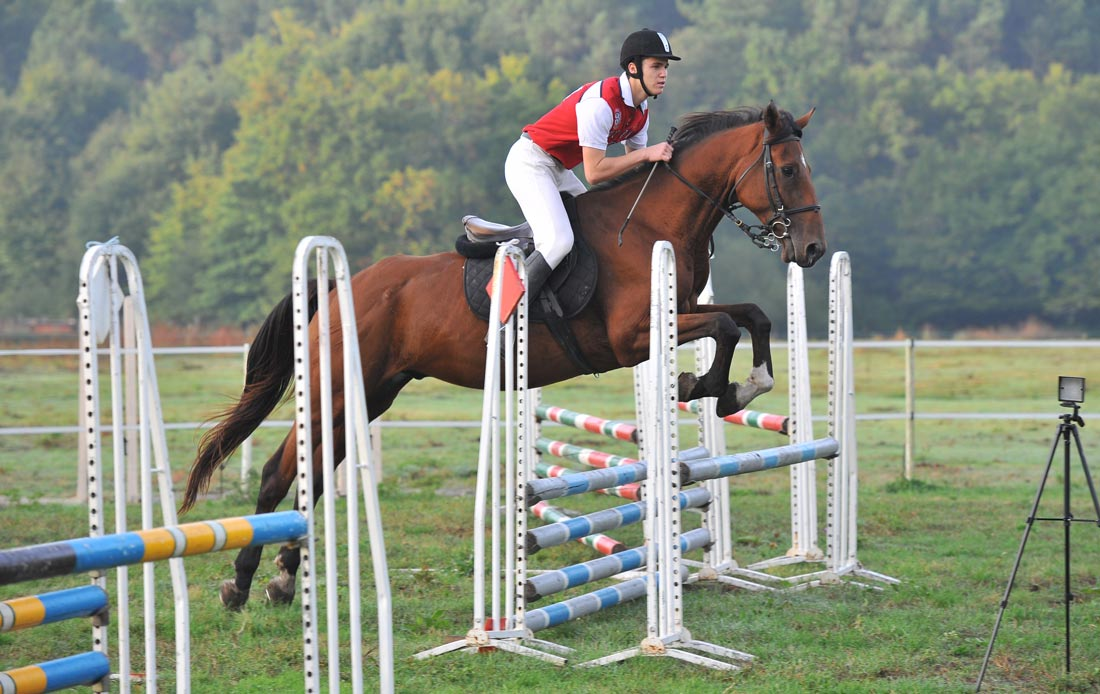 Training Program And Jumping In France Riding
