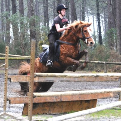 stage cheval dressage obstacle Mimizan