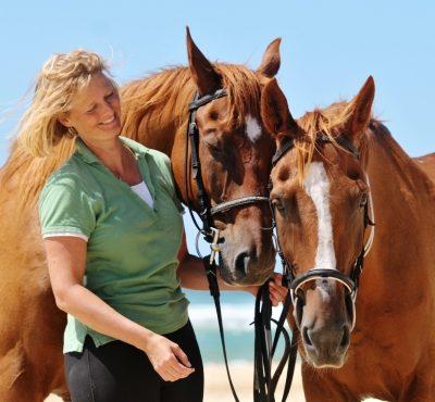stage à cheval pour adulte 6 jours