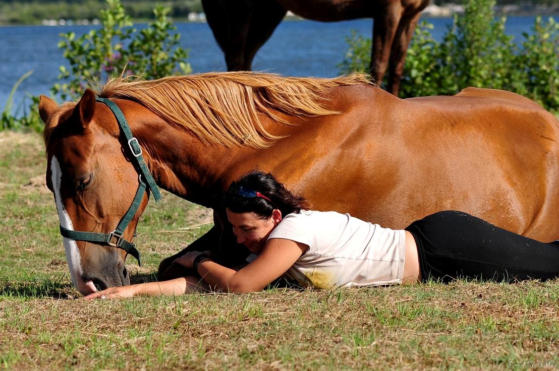 cheval rando ados