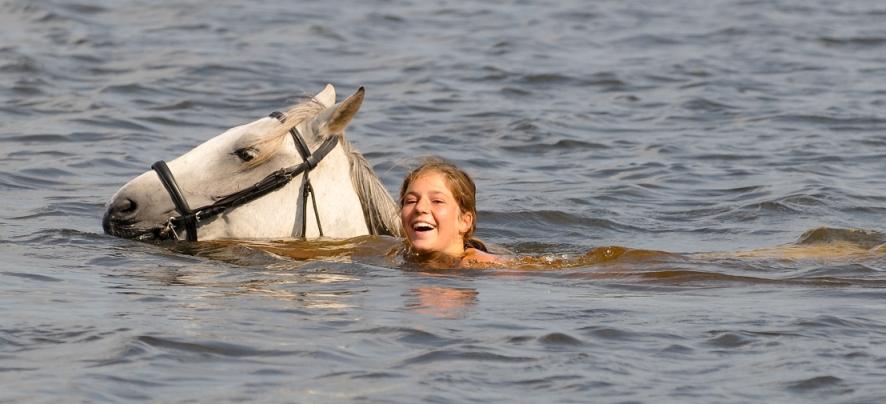baignade lac cheval