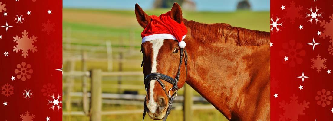 Noël à cheval !