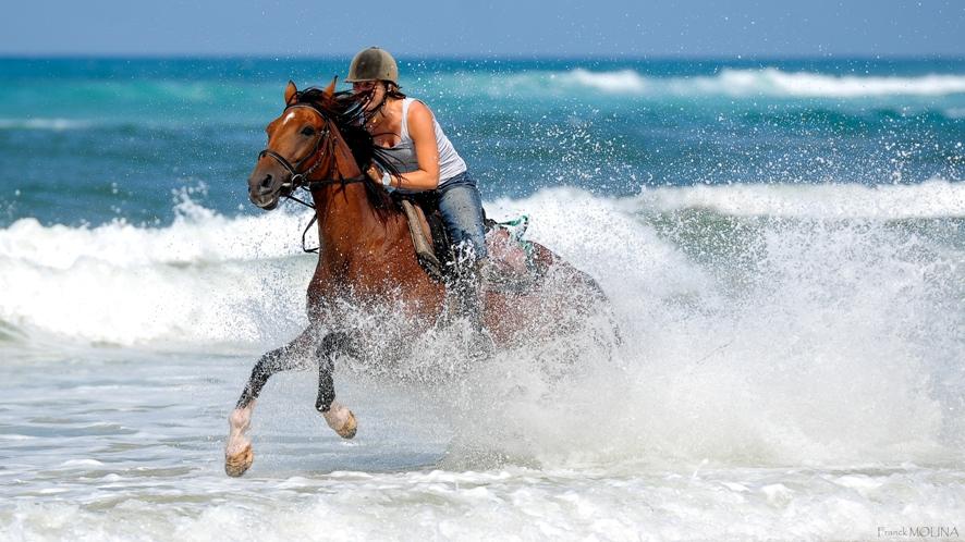 galop à cheval sur la plage landaise